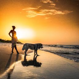 dziewczyna z psem alaskan malamute na plaży w Juracie