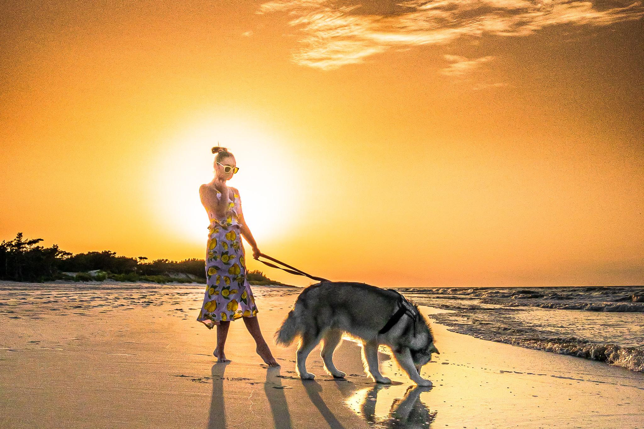 kobieta z psem alaskan malamute na plaży w Juracie zachód słońca