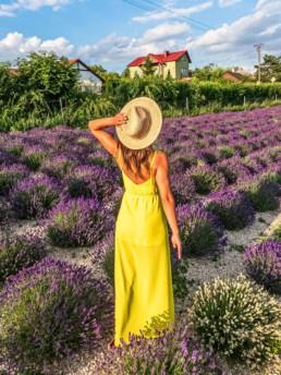Lavendel Natur Haus w Rejowcu koło Chełma.