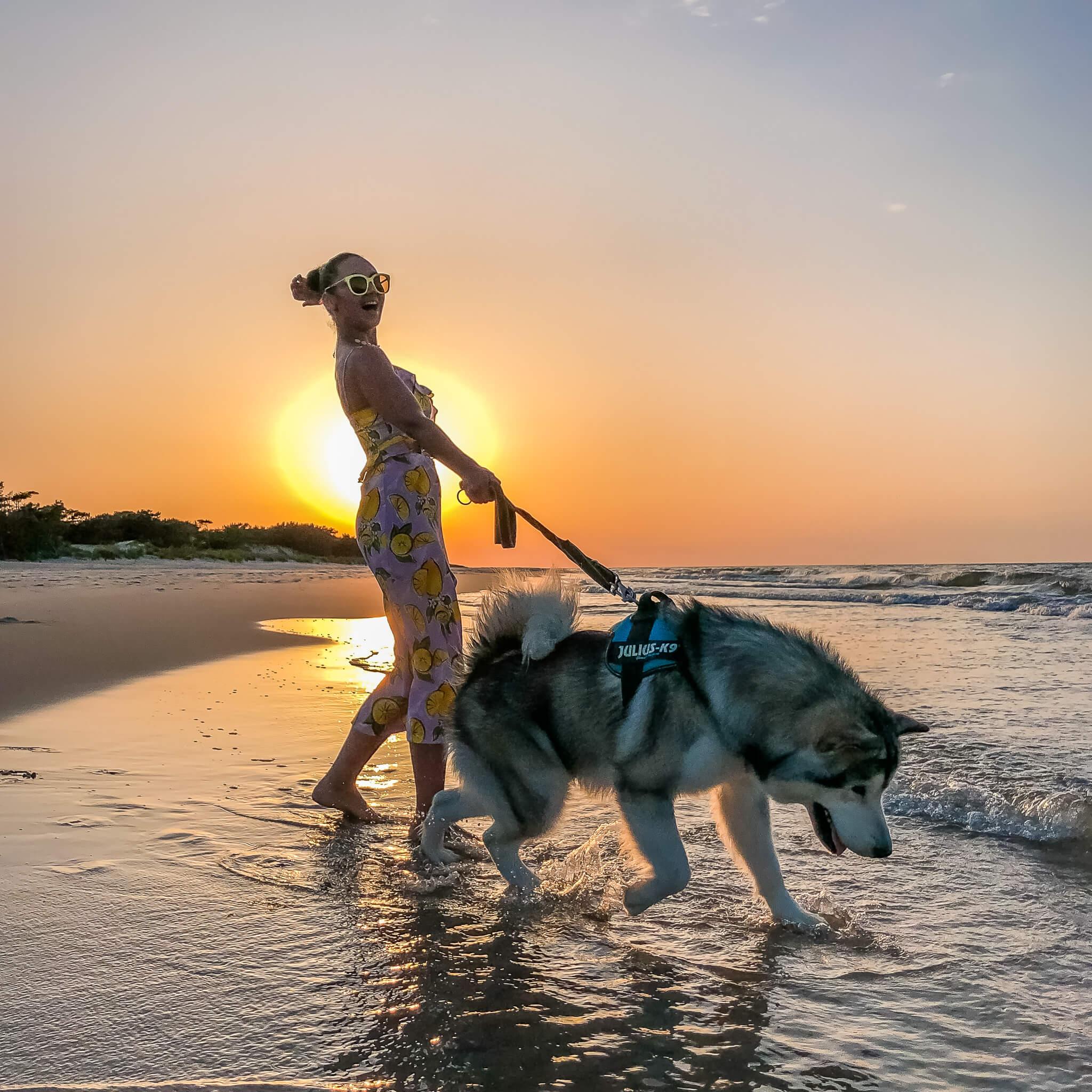 dziewczyna z psem alaskan malamut na plaży w Juracie zachód słońca